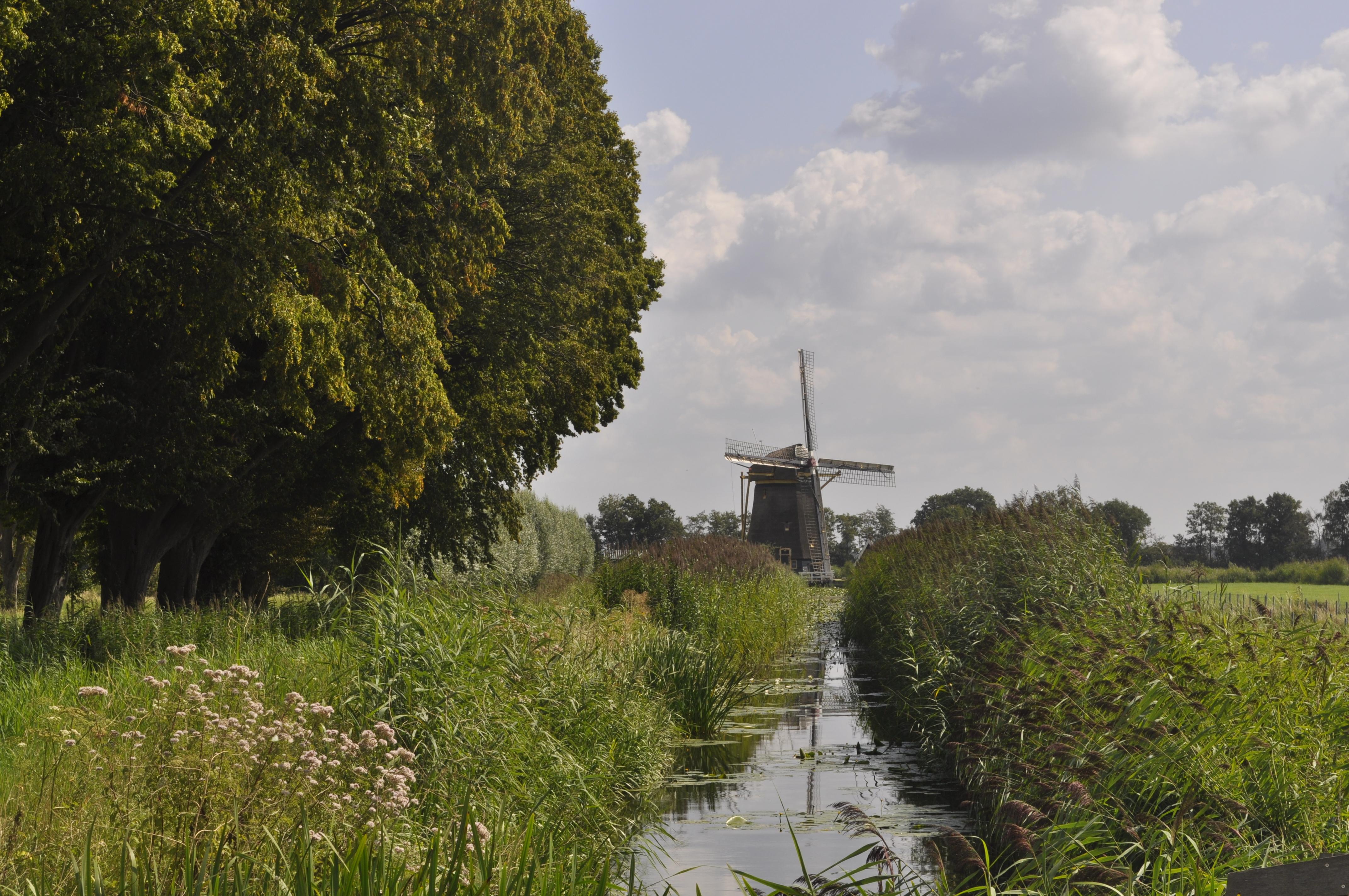Il branco in trasferta nei Paesi Bassi – Giorno 12